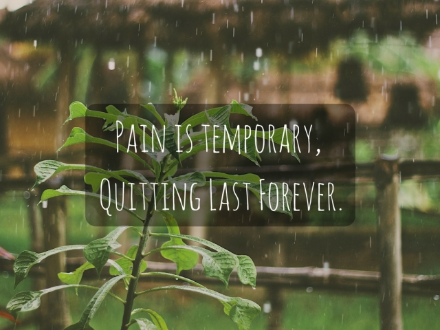 Pain is temporary, Quitting Last Forever.
